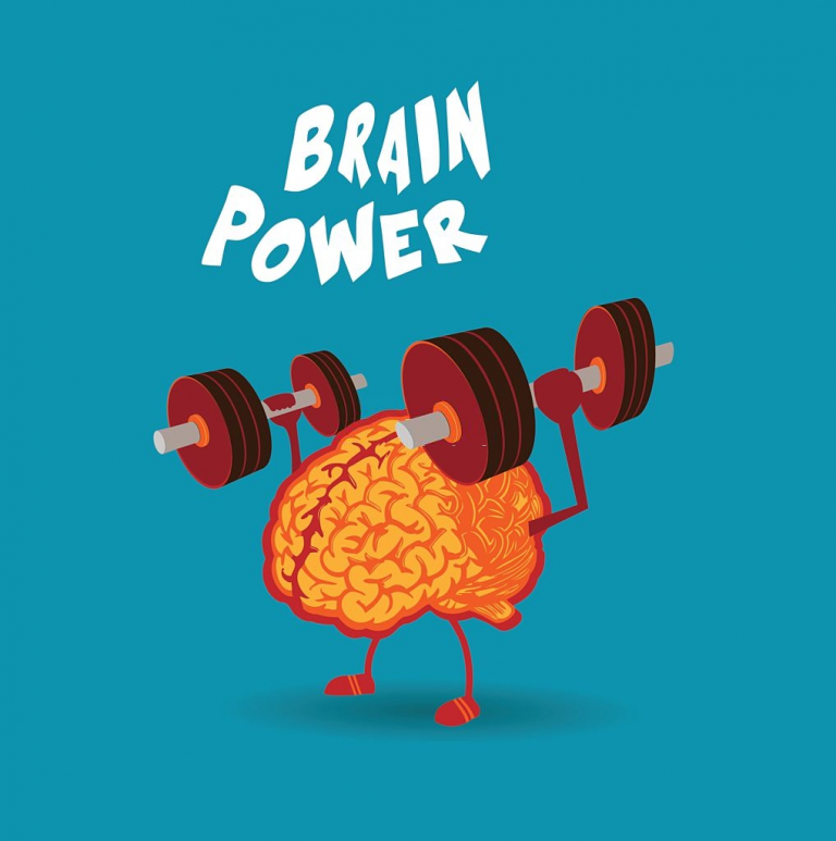 Eat These Foods To Improve Brain Power And Memory